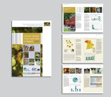 Broschueren Bayerisches Staatsministerium Forsten Ernährung Landwirtschaft 3